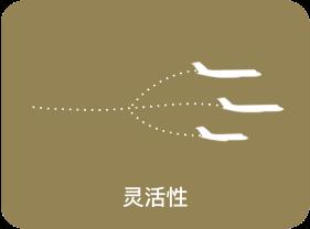 Chinese-6